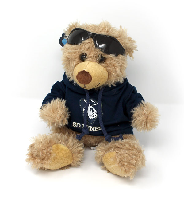 Plush Ray Sunglass Bear With Hoody